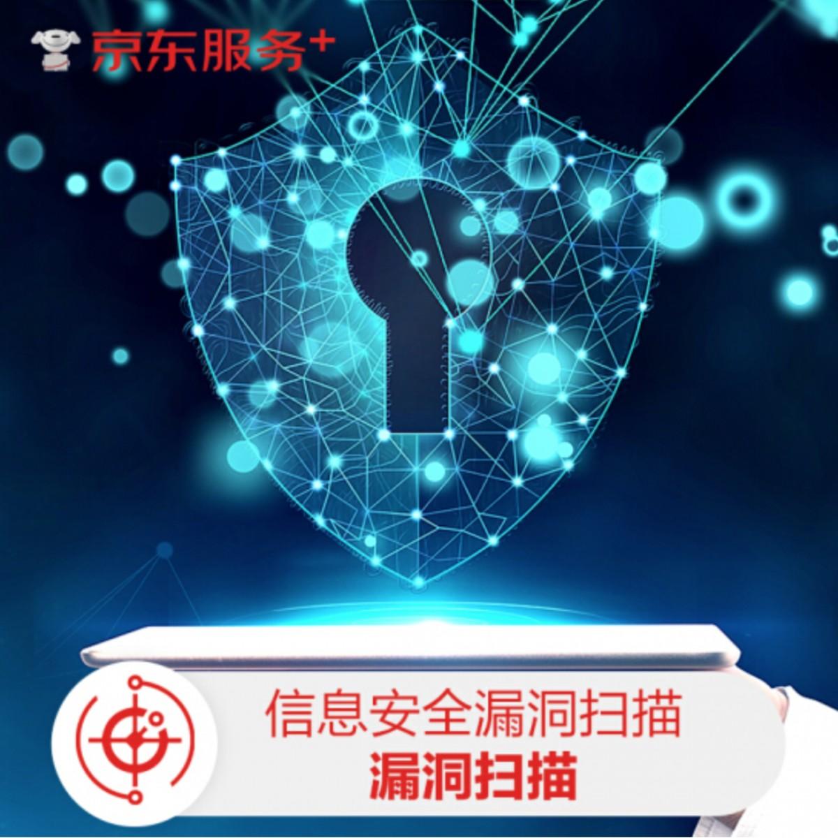 信息安全漏洞扫描1年版(信息安全扫描服务3次/年/域名)