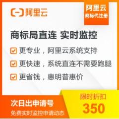 商标注册 阿里云专家服务 阿里云商标代注册【1类10项】