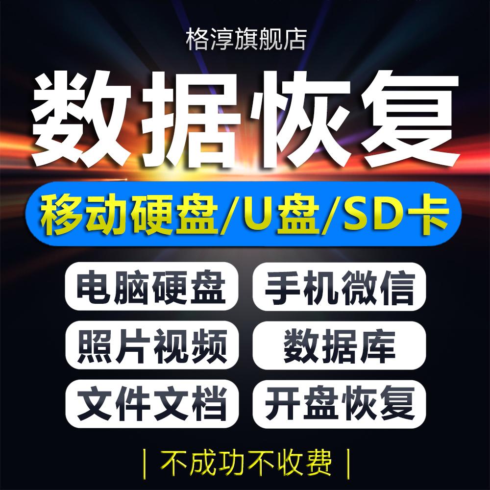 电脑U盘内存sd卡照片文件视频数据恢复软件移动硬盘修复维修服务